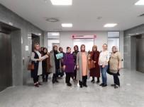 KADIN DOĞUM UZMANI - Gebe Okulu Eğitimleri Tamamlandı
