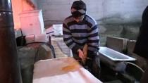 ALABALIK - Gümüşhane'de Balık Üretiminden Ekonomiye 90 Milyon Liralık Katkı