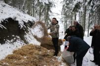 ALABALIK - Tarım Ve Orman Bakanı Pakdemirli Yaban Hayvanlarına Yem Bıraktı