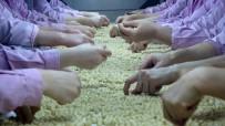 ÇIN HALK CUMHURIYETI - Fındık İhracatçılarının Hedefi Açıklaması Çin