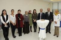 SİNAN ASLAN - İpekyolu'nda 5 Aralık Dünya Kadın Hakları Günü Etkinliği
