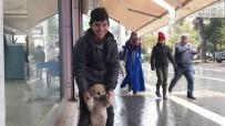 Kızıltepeli Çocuk Yiyeceğini Sokak Köpeği İle Paylaştı