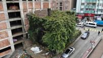 TOPHANE - Rize'deki Sarmaşık Kaplı Ev Görenleri Şaşırtıyor