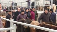 Ensar Ögüt, Hayvan Pazarında Besicilerle Bir Araya Geldi