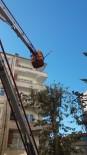 Bağlar Belediyesi'nden Ağaç Bakımı Ve Budama İşlemleri İçin Özel Çalışma