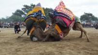 Burhaniye'de Güreş Tutkunu Amatör Fotoğrafçı İlgi Odağı Oldu