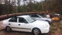 Antalya'da Fırtınada 197 Elektrik Direği Yıkıldı, 212 Kilometrelik Elektrik Hattı Hasar Gördü