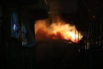 TANDOĞAN - Başkent'teki Yangında Köpekler Telef Oldu