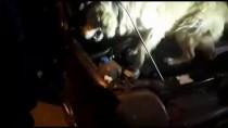 Otomobilinde Eroin Ele Geçirilen Şüpheli Tutuklandı