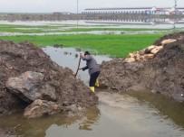 Kahramanmaraş'ta Tarım Arazileri Sular Altında Kaldı