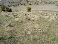 KERVAN - Mesudiye'deki Selçuklu Mezarları İlgi Bekliyor