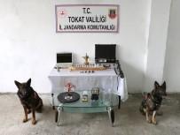 TARİHİ ESER KAÇAKÇILIĞI - Jandarma Köpekleri Uydu Ve İlgi'den Tarihi Operasyon