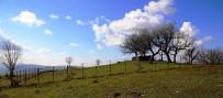 Lice Belediyesi, Mezarlıkların Etrafını Tel Örgüyle Kapattı