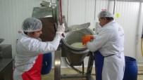 KATKI MADDESİ - Devlet Desteğiyle Süt Ürünleri Tesisi Kurdu