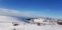 KAYAK MERKEZİ - Hıdırnebi Yaylası'nda Kayak Sporu İçin Elverişli Yerler Araştırıldı