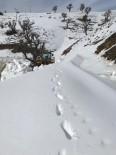 Sason'da Kar Yağışı Nedeni İle 25 Köy Yolu Ulaşıma Kapandı