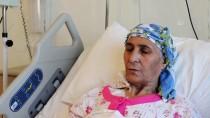 PAMUKKALE ÜNIVERSITESI - Annesine Karaciğeriyle 'Can' Oldu