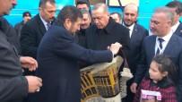 Cumhurbaşkanı Erdoğan'a Külliye İşlemeli Yağcıbedir Halısı