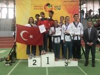 EUROPE - Eskişehirli Sporculardan Almanya'da Tekvando Dersi