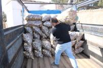 BAĞLAMA - Patates Üreticisi Tanzim Satışlarından Memnun