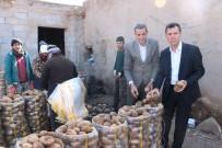BAĞLAMA - Tanzim Satışlarına Günlük 100 Ton Patates Niğde'den Gidiyor