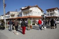 EĞİTİM DERNEĞİ - Fethiye'de Sokak Hayvanlarının Zehirlenerek Öldürülmesi Protesto Edildi