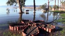 LODOS - Aşırı Yağışlar Köyceğiz Gölü'nü Taşırdı