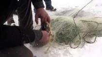 Buz Tutan Baraj Balıkçılara Ekmek Kapısı Oldu