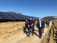 SARMAŞıK - Başkan Yaman, Güneş Tarlası Projesini Yerinde İnceledi