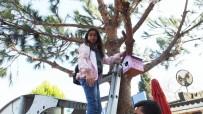ÖĞRETMENLER - Burhaniyeli Öğrenciler Ağaçlara Kuş Yuvaları Astı