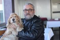 İNTERNET BANKACILIĞI - Okuduğu Yazıdan Etkilenen Restoran İşletmecisi, Bir Haftalık Gelirini Felçli Hayvanlara Bağışladı