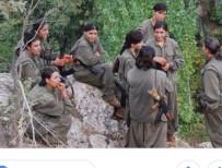 CİNSEL İLİŞKİ - PKK, Kadın Teröristleri Motivasyon İçin Kullanıyor