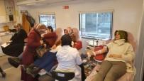 MEHMET KASAPOĞLU - Fatsa'da Kan Bağışı Kampanyası