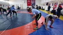 GÜREŞ MİLLİ TAKIMI - Moğolistan Kadın Güreş Takımı, Edirne'de Kampa Girdi