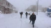 Bingöl'ün 2 İlçesinde Okullara Kar Tatili