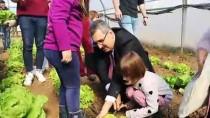 LALE SOĞANI - Rektör Şahin, Anaokulu Öğrencileriyle Lale Soğanı Ekti