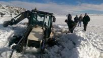 Yüzeyi Buz Tutan Çıldır Gölü'ne Çıkan Kepçe, Göle Gömüldü