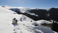 Ağır Kış Şartlarına Rağmen Gümüşhane Yaylalarında Terörle Mücadele Operasyonları Sürüyor