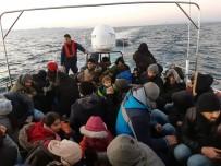 ALTıNKUM - Didim'de 45 Düzensiz Göçmen Yakalandı