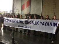 İSTANBUL EMNIYET MÜDÜRÜ - İstanbul'da 'Yaya Öncelikli Trafik'E Dikkat Çektiler