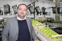 Karaman'da Elmanın Depo Çıkış Fiyatı 1,5 İla 2,5 Lira Arasında Değişiyor