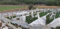 DEMRE - Kaş'ta Fırtınada 500 Dönüm Sera Zarar Gördü