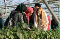 GIDA MÜHENDİSLİĞİ - (Özel) Suriyeli Öğrenciler Şanlıurfa'da Ekonomiye Katkıda Bulunuyor