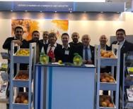 BERLIN - MTSO, Fruit Logistica Fuarı'nda Yerini Aldı