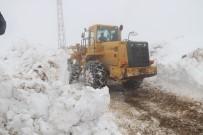 Hizan'da Kar Kalınlığı 5 Metreyi Buldu