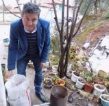 KARAOĞLAN - Yaşlı Kadının Sobasını Her Gün Muhtar Yakıyor