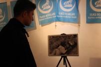 DAĞLIK KARABAĞ - Eskişehir Ülkü Ocakları 'Hocalı Soykırımı'nı Fotoğraf Sergisi İle Andı