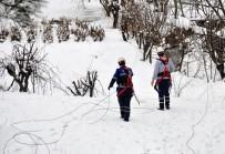 Kar Yağışı Şirvan'da Elektrik Şebekesini Vurdu