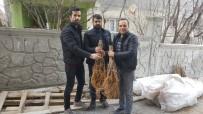 Sason'da İpek Böceği Yetiştiricilerine 2 Bin Adet Dut Fidanı Dağıtıldı