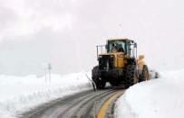 Siirt'te Kar Yağışı Nedeniyle 29 Köye Ulaşım Sağlanamıyor